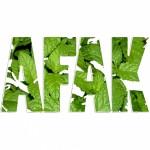 Profile picture of AFAK